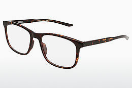 Eyewear Puma PU0184O 008 - Brown, Havanna