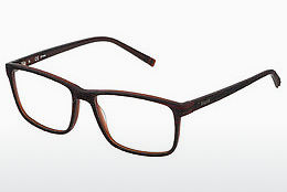 Eyewear Sting VST041 0J91 - Brown
