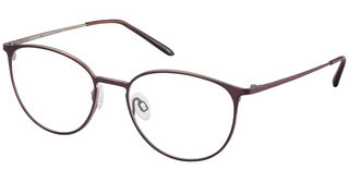 Charmant CH12152 DO brown