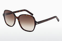 Ophthalmic Glasses Saint Laurent CLASSIC 8 004 - Brown, Havanna
