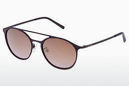 Ophthalmic Glasses Sting SS4902 9UGG