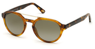 Web Eyewear WE0278 56R