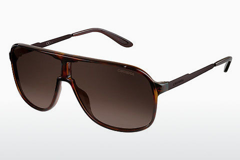 太陽眼鏡 Carrera NEW SAFARI KME/J6