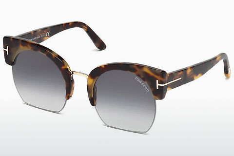 太陽眼鏡 Tom Ford Savannah (FT0552 56B)